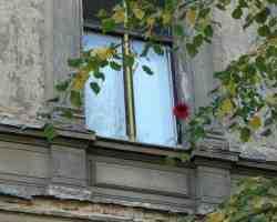 window-276922 1920